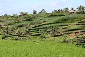 indonesie vroeger foto